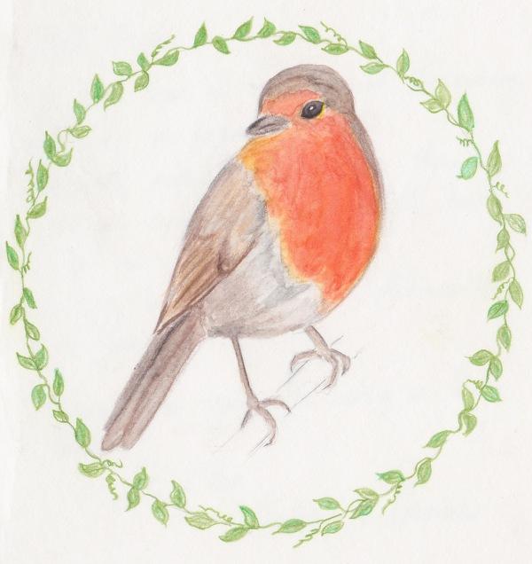 Robin-bird-card