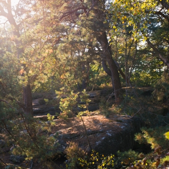 indian-summer-in-mullerthal-luxembourg-photo-by-miss-coco