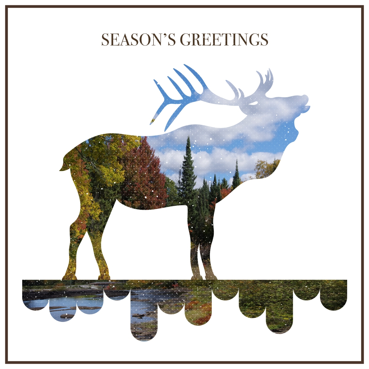 Season's greetings - Design by Miss Coco