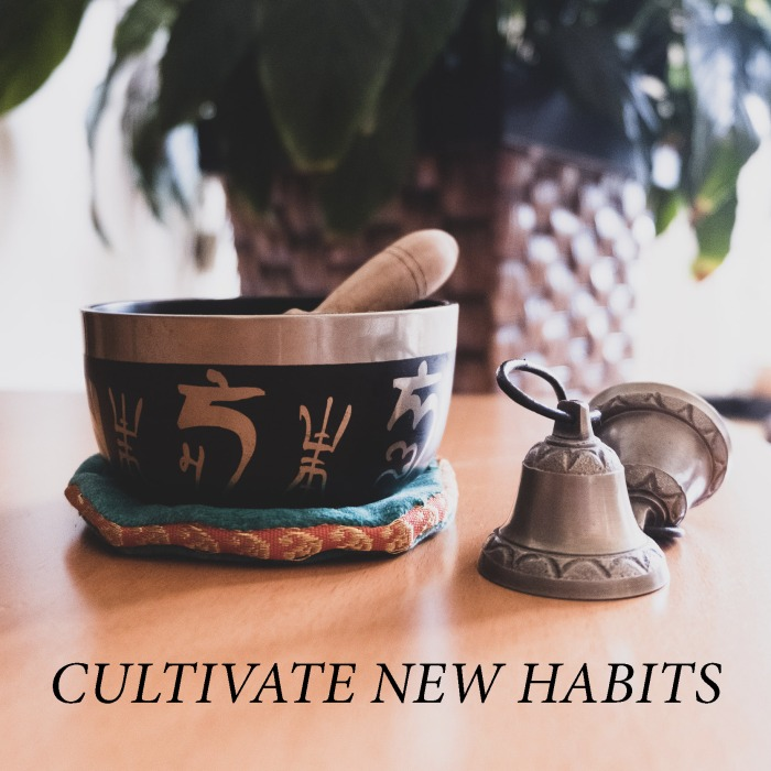 Cultivate new habits