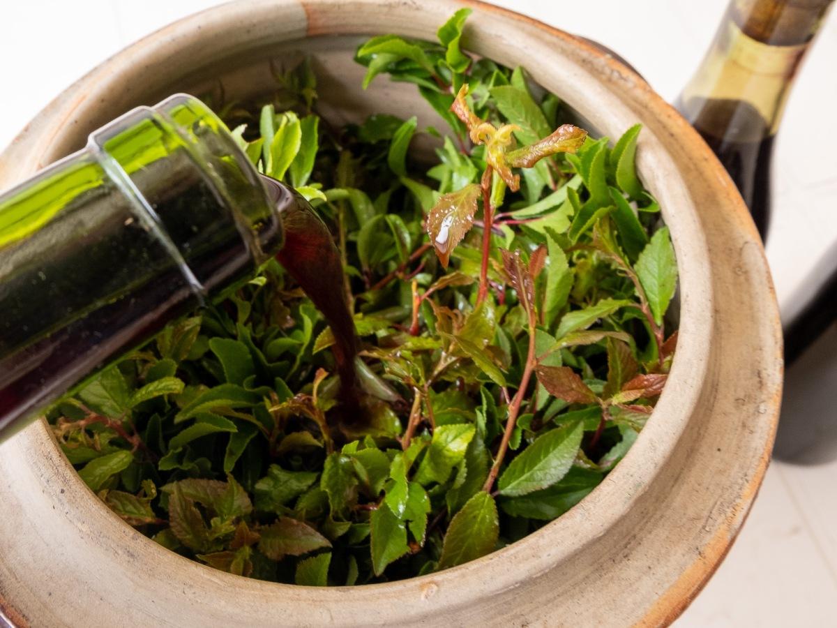Vin d'Epine recipe - pouring the wine