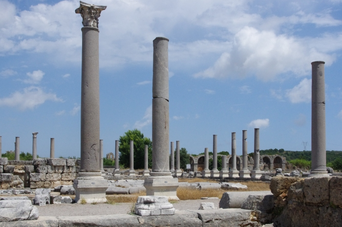 The agora with the city wall in the back - Perge,Turkey