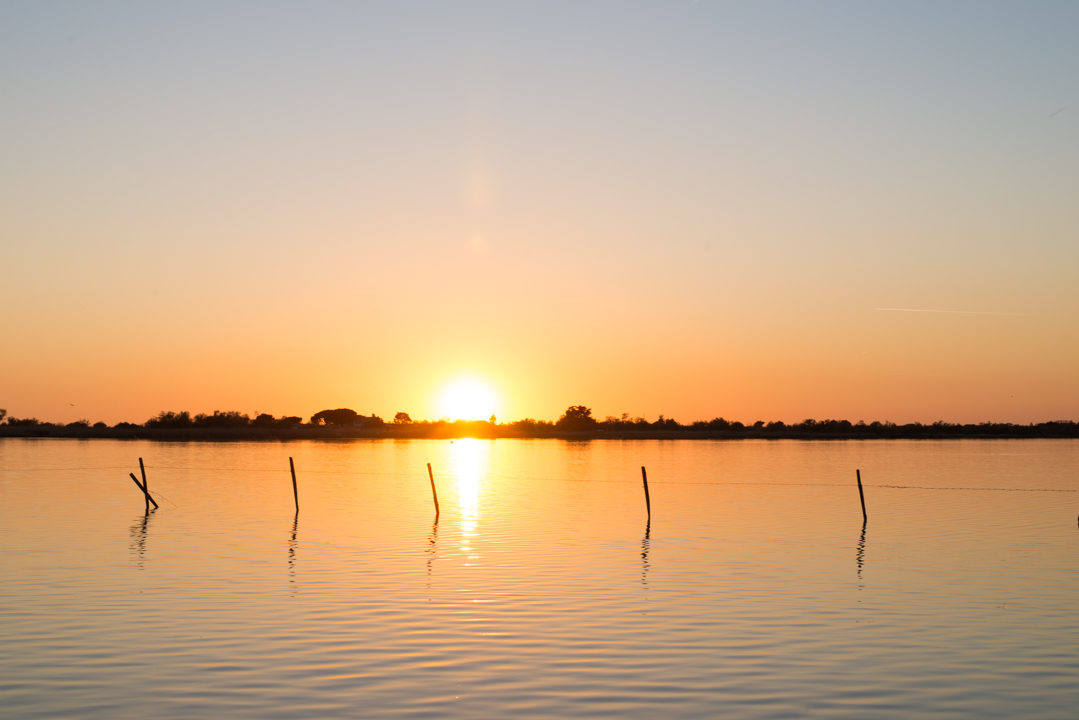 Sunset view - stay in the Camargue region - South of France - www.RoadtripsaroundtheWorld.com