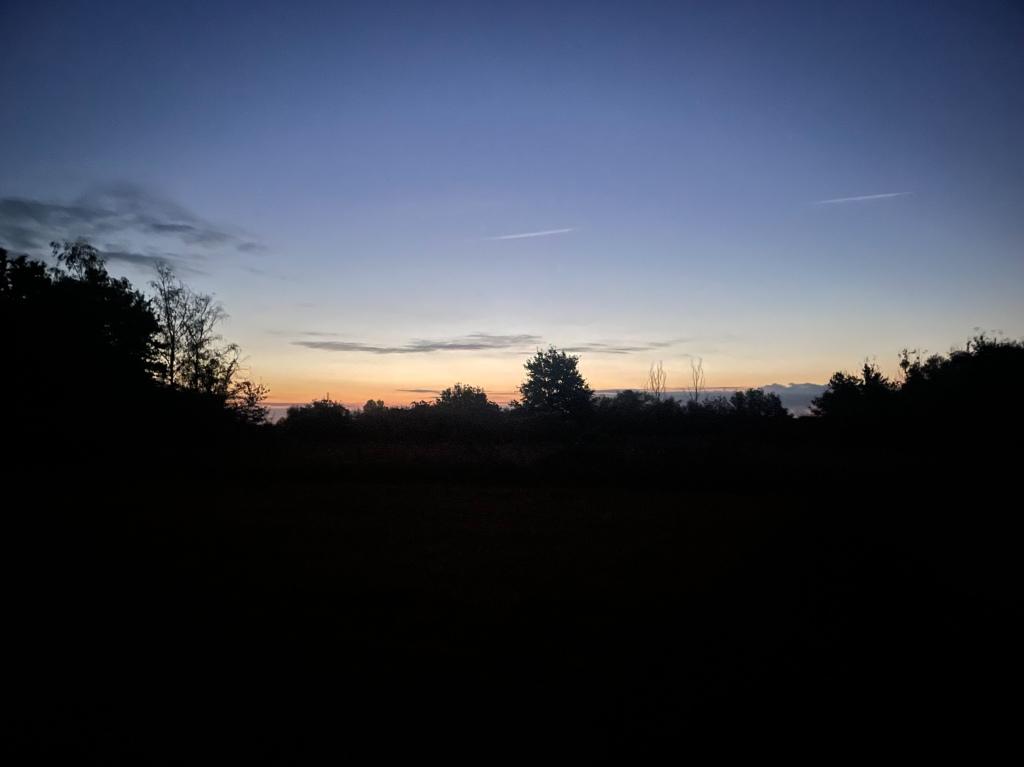 Late fall sunrise